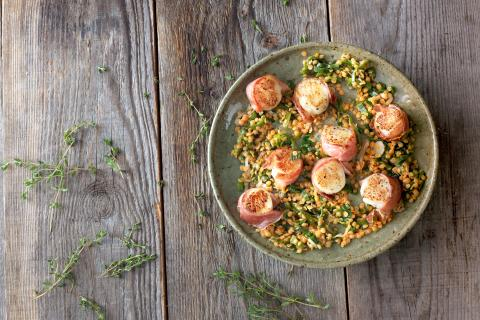 Scallops on a red lentil salad