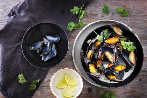 Mussels in coconut sauce