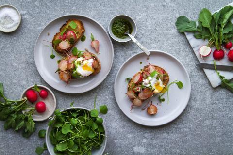 Tartines aux radis, œuf poché et pesto