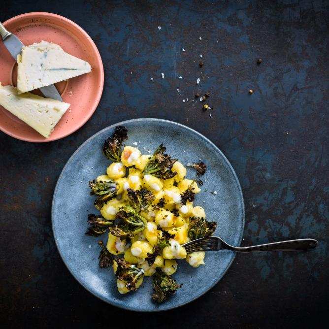 Gnocchi with gorgonzola sauce and kalettes (flower sprout)