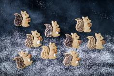 Squirrel biscuits