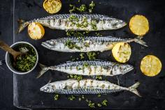 Mackerel with pistachio salsa verde